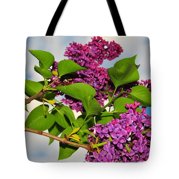 Lilacs Tote Bag by Catherine Reusch  Daley