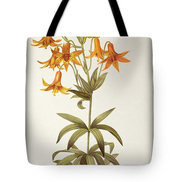 Lilium Penduliflorum Tote Bag by Pierre Joseph Redoute