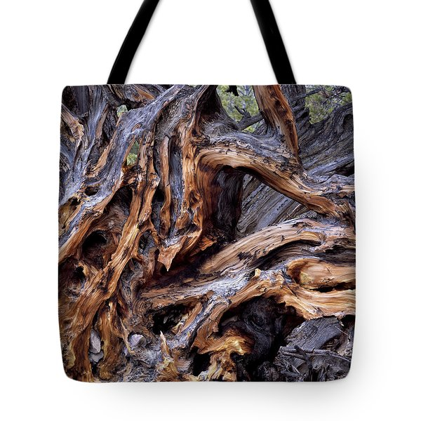 Limber Pine Roots Tote Bag by Leland D Howard