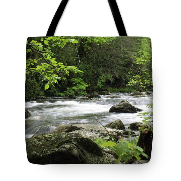 Litltle River 1 Tote Bag by Marty Koch