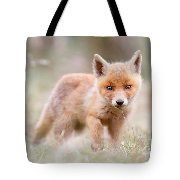 Little Fox Kit, Big World Tote Bag by Roeselien Raimond