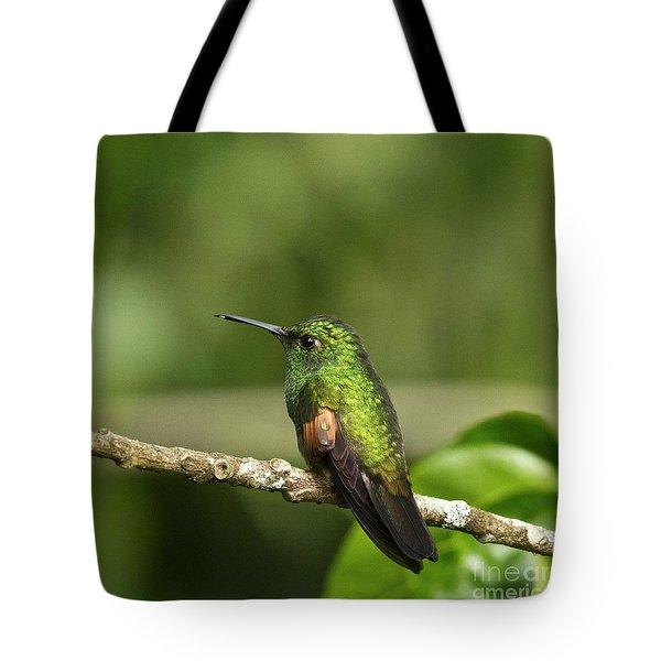 Little Hummingbird Tote Bag by Heiko Koehrer-Wagner