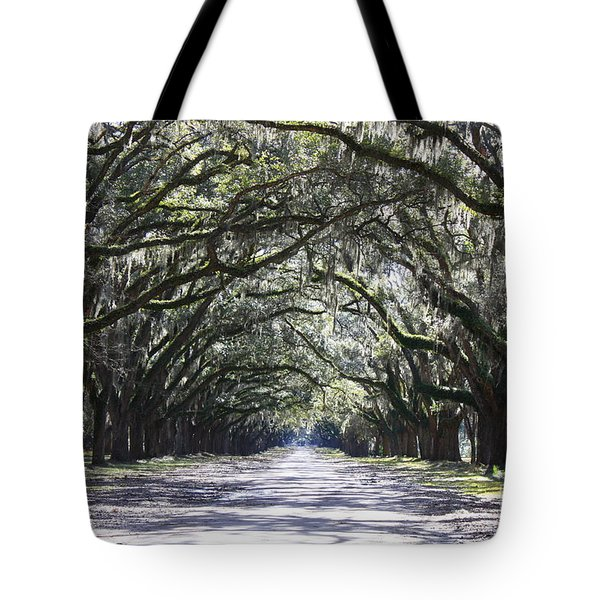 Live Oak Lane in Savannah Tote Bag by Carol Groenen