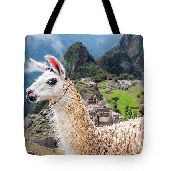 Llama At Machu Picchu Tote Bag by Jess Kraft