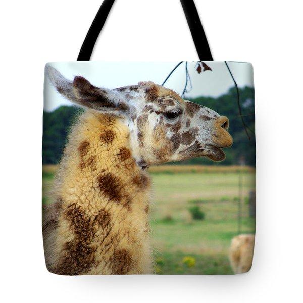 Llama Tote Bag by Jai Johnson