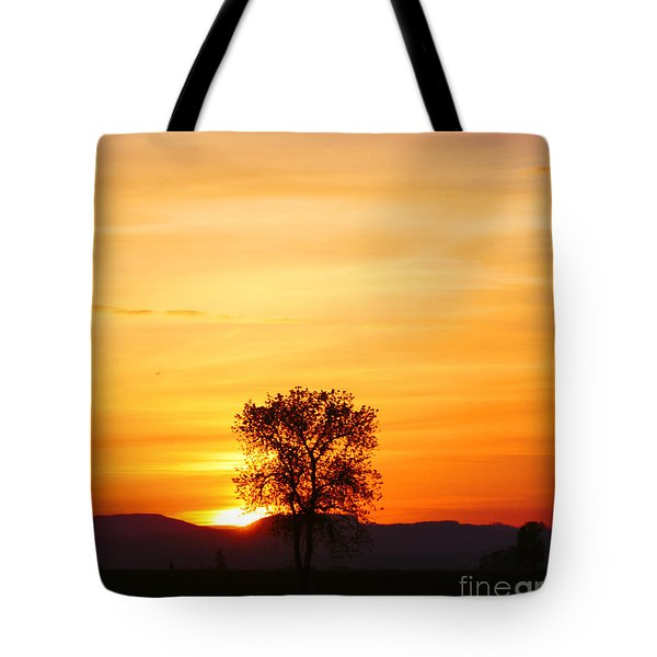 Lone Tree Sunset Tote Bag by Nick Gustafson