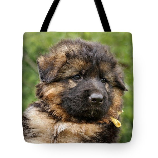 Long Coated Puppy Tote Bag by Sandy Keeton