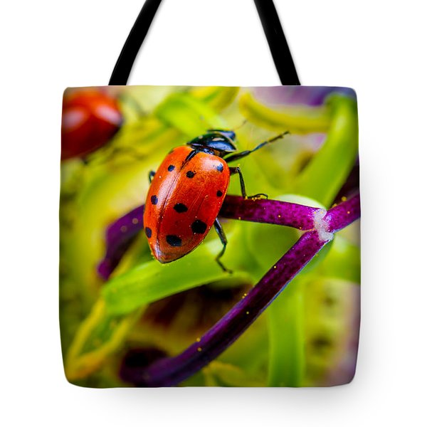 Look At The Colors Over There. Tote Bag by TC Morgan