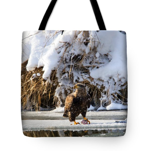 Lookout Above Tote Bag by Mike Dawson