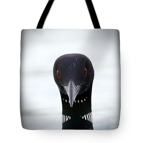Loon Stare Tote Bag by Peter Gray