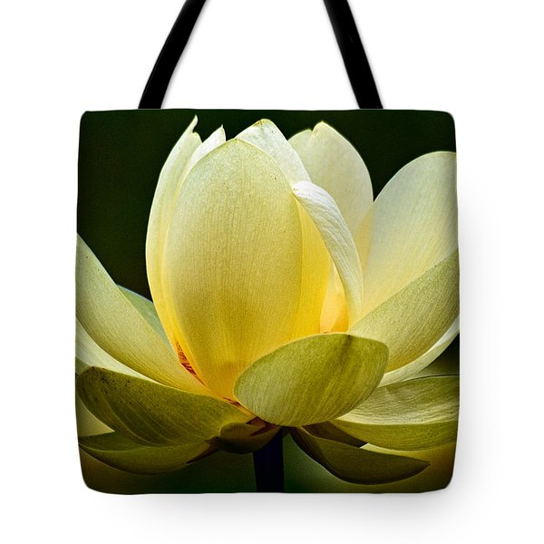 Lotus Blossom Tote Bag by Christopher Holmes