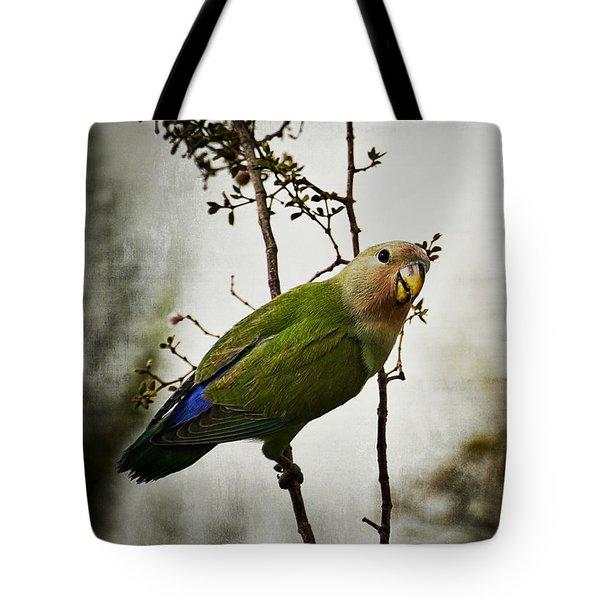 Lovebird  Tote Bag by Saija  Lehtonen
