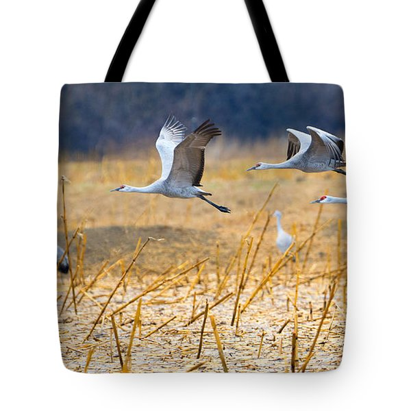 Low Level Flyby Tote Bag by Mike Dawson