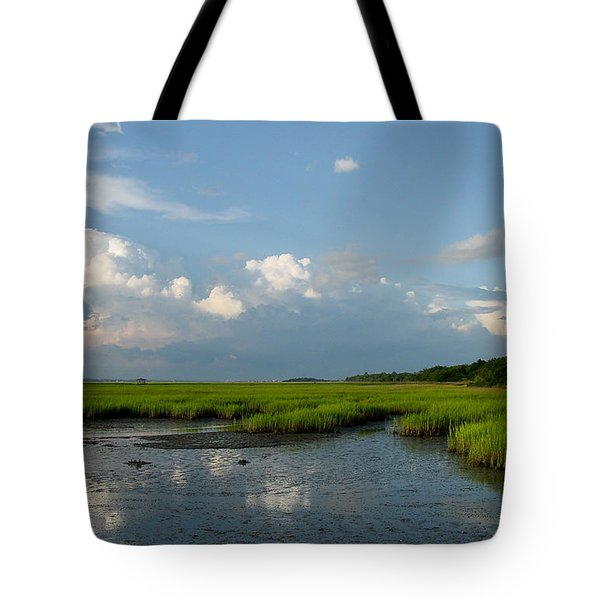 Low Tide Tote Bag by Suzanne Gaff
