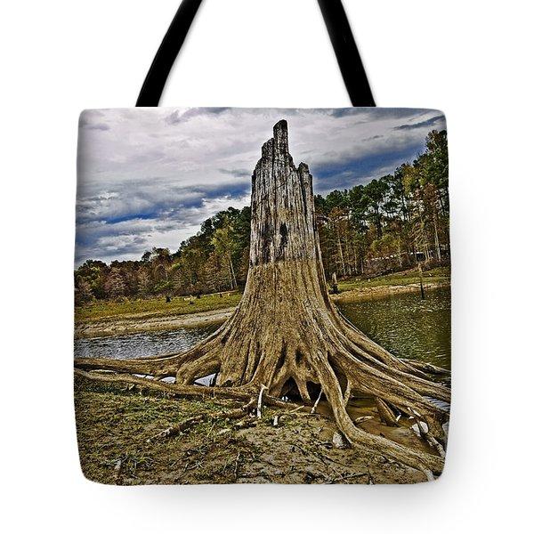 Low Water Tote Bag by Scott Pellegrin