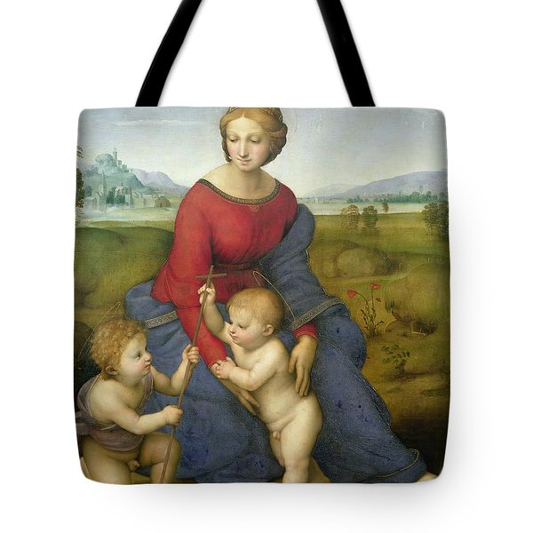 Madonna In The Meadow Tote Bag by Raphael