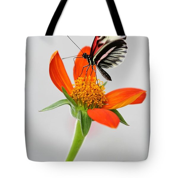 Magical Butterfly Tote Bag by Sabrina L Ryan