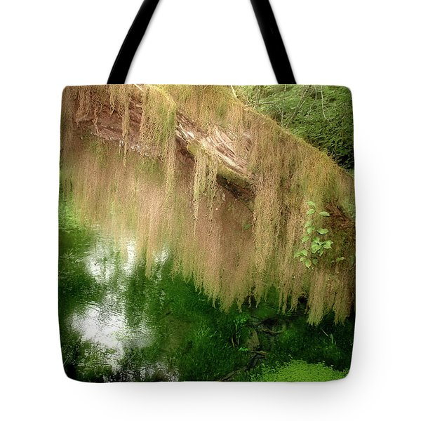 Magical Hall of Mosses - Hoh Rain Forest Olympic National Park WA USA Tote Bag by Christine Till