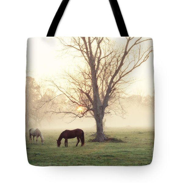 Magical Morning Tote Bag by Scott Pellegrin
