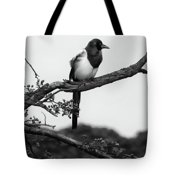 Magpie  Tote Bag by Philip Openshaw