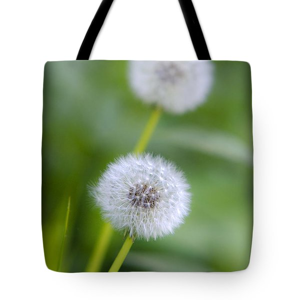 Make A Wish Dandelion Tote Bag by Christina Rollo