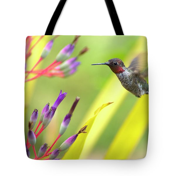 Male Anna's Hummingbird Tote Bag by Mike Herdering