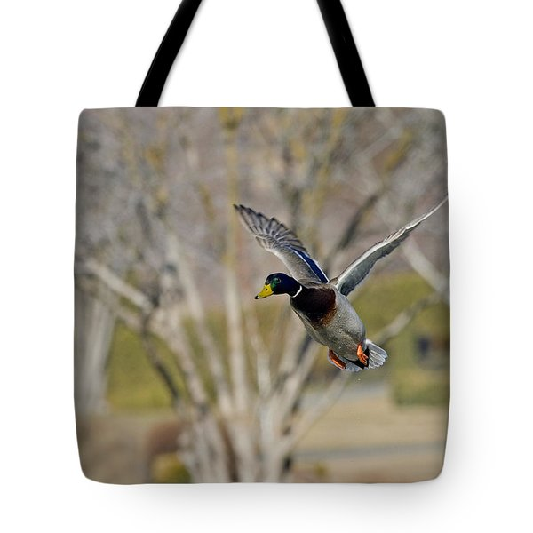 Mallard Approach Tote Bag by Mike  Dawson