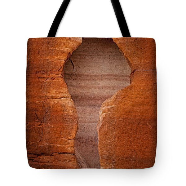 Man in Rock Tote Bag by Kelley King