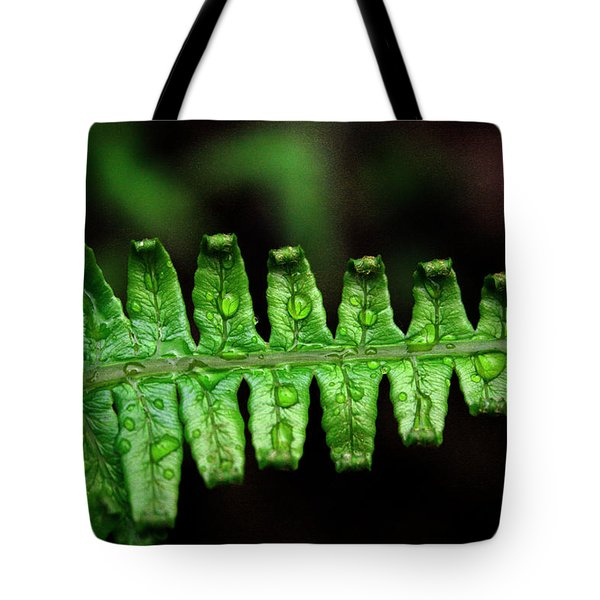 Manoa Fern Tote Bag by Jennifer  Bright