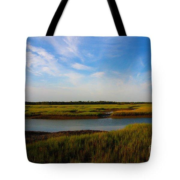 Marshland Charleston South Carolina Tote Bag by Susanne Van Hulst