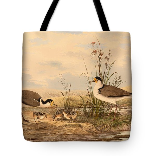 Masked Lapwing Tote Bag by Mountain Dreams