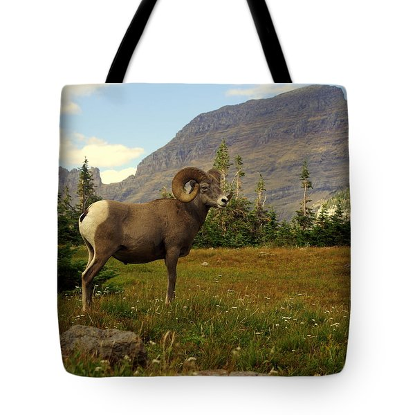 Master Of His Domain Tote Bag by Marty Koch
