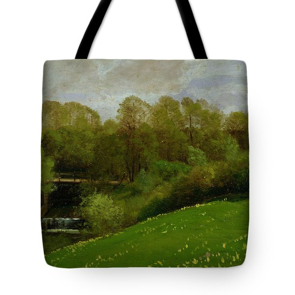 Meadow And Woodland Tote Bag by Valentin Ruths