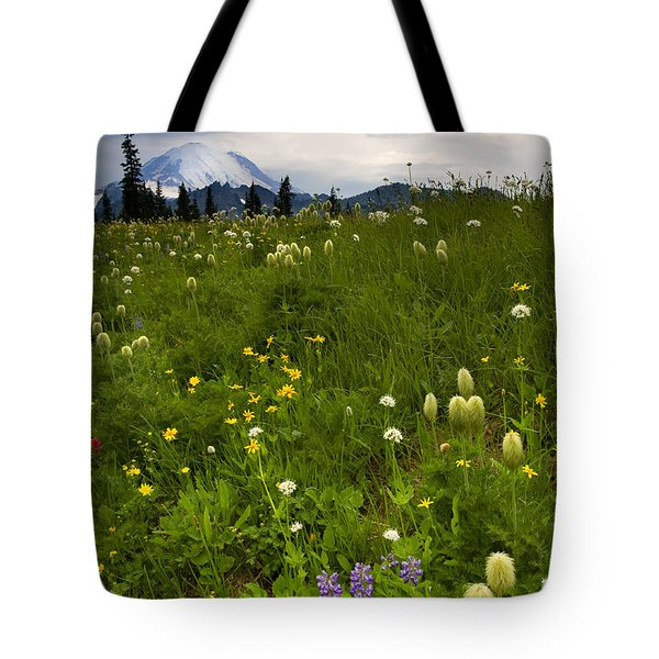 Meadow Beneath The Storm Tote Bag by Mike  Dawson