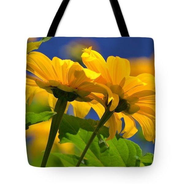 Mexican Sunflower Tree Tote Bag by Melanie Moraga