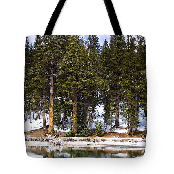 Mid Day Melt Tote Bag by Chris Brannen
