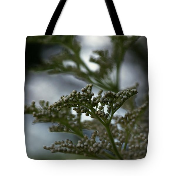 Mirrored Tote Bag by Linda Shafer