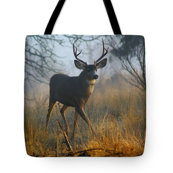 Misty Morning Buck Tote Bag by Ben Upham