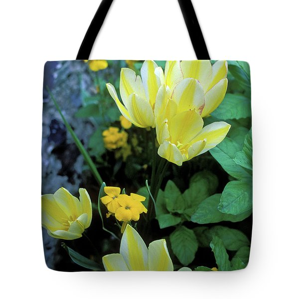 Monet's Fancy Tulips Tote Bag by Kathy Yates