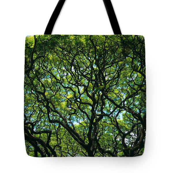 Monkeypod Canopy Tote Bag by Peter French - Printscapes