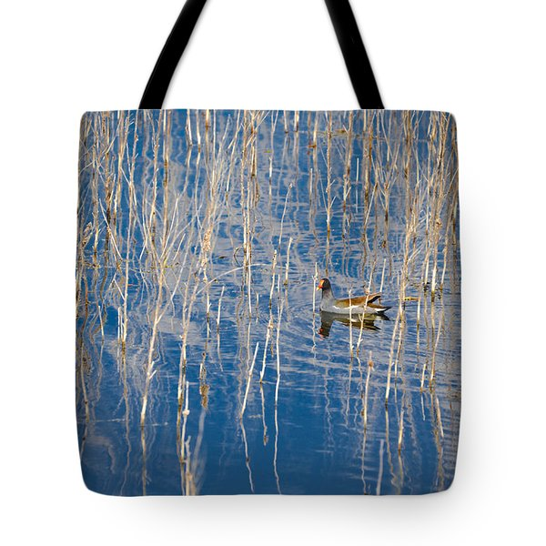 Moorhen In The Reeds Tote Bag by Carolyn Marshall