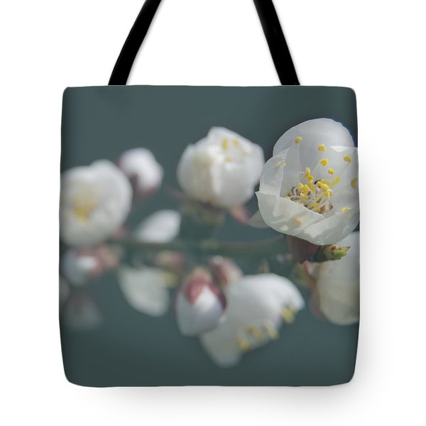 Moorpark Apricot B 4212 Tote Bag by Michael Peychich