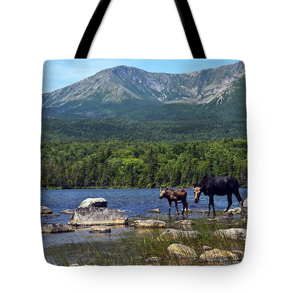 Moose Baxter State Park Maine 2 Tote Bag by Glenn Gordon