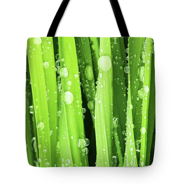 Morning Drops Tote Bag by Mircea Costina Photography