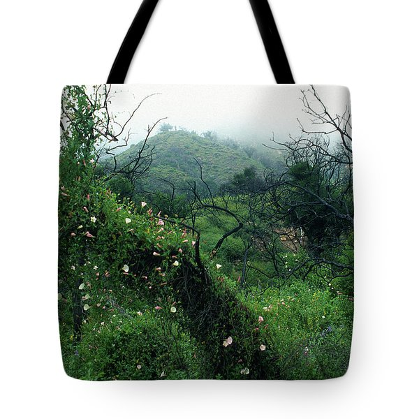 Morning Glories in Fog Tote Bag by Kathy Yates