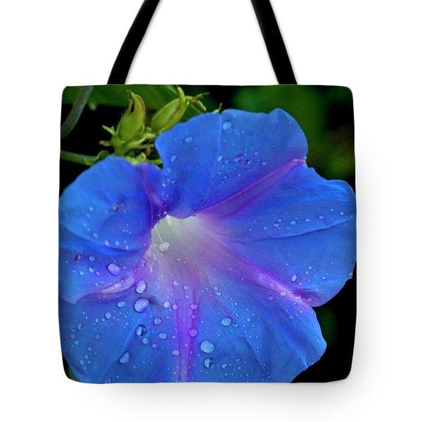Morning Glory Dew Tote Bag by Dennis Reagan