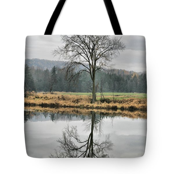 Morning Haze And Reflections Tote Bag by Deborah Benoit