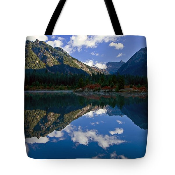 Morning Musings Tote Bag by Mike  Dawson
