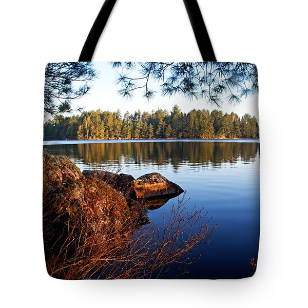 Morning On Chad Lake 2 Tote Bag by Larry Ricker