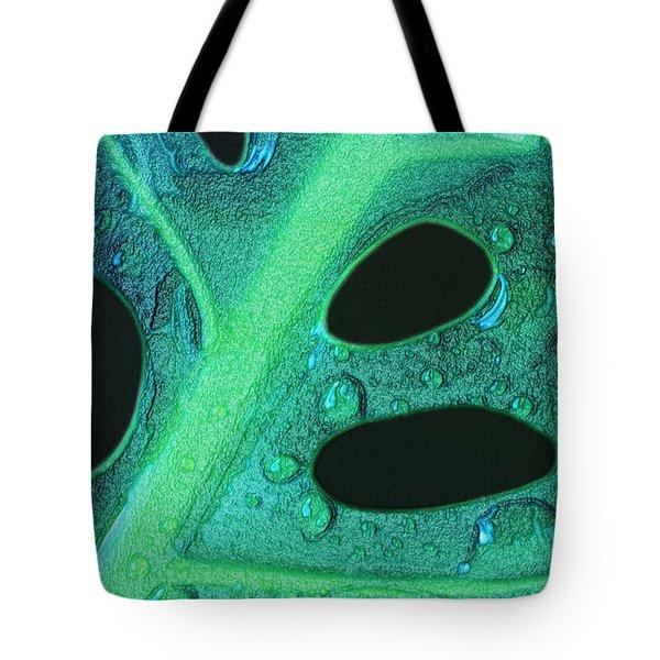 Morning Rain Tote Bag by Paul Wear